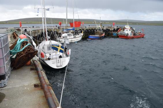 Vinden trycker på i Balta Sound och vi kommer inte ut förrän det mojnar.