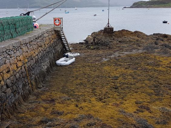 I viken vid Isle of Ornsay gör man klokast i att använda bojarna utanför hamnen. Vid lågvatten är hela hamnen torrlagd.