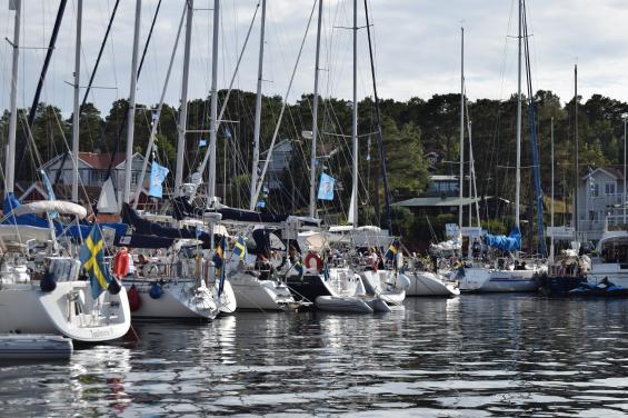 Hela östra pontonen är full av kvinnliga seglare och deras båtar.