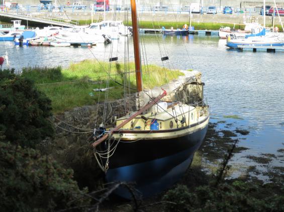 Marknaden för båtbottentvättar torde vara svårjobbad i tidvattenländer. Den som vill göra ren sin båt under vattenlinjeninväntar lågvatten.